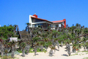 The Beach House Private Rental 8